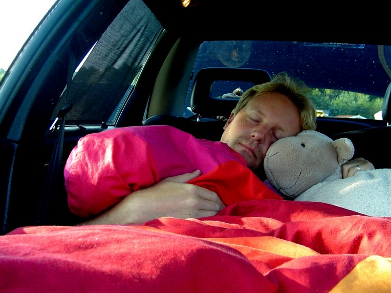 Schlaf-Schaf ist dabei