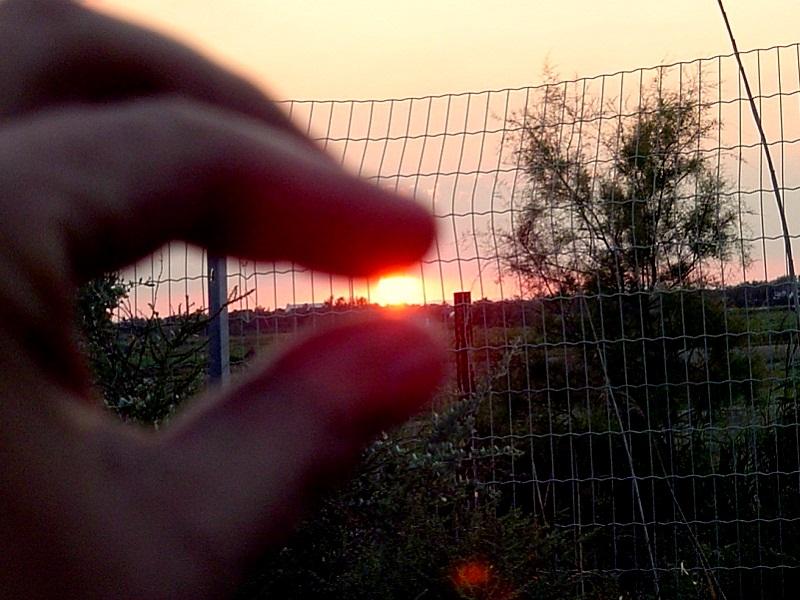 Die Sonne des Südens