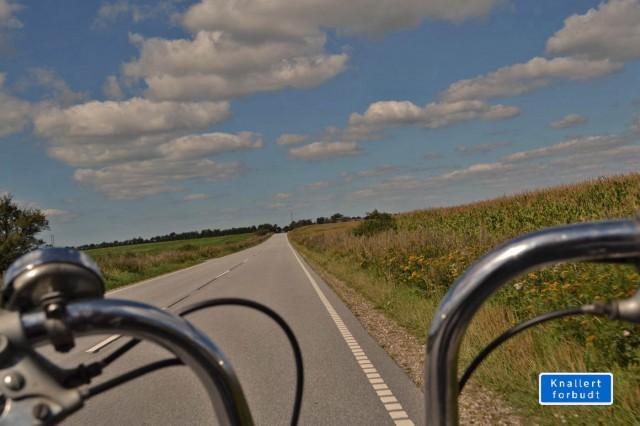 Easy Rider ist anders, aber die Richtung stimmt