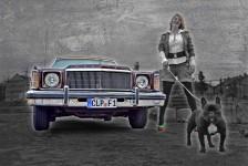 Die schöne Frau, der liebe Hund und der alte Mercury
