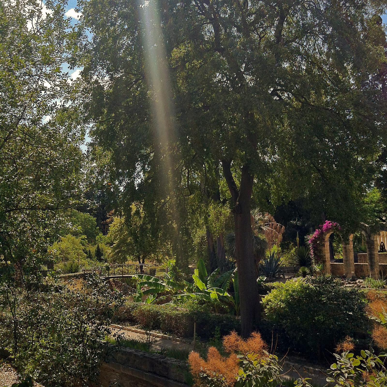 Botanischer Garten - fermé