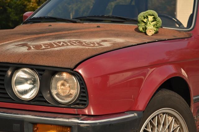 Broccoli für das Kind der 80er