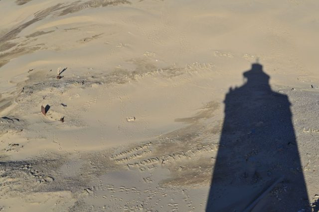 Ein seltener Schatten